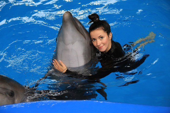 Подарки плавание с дельфинами 563